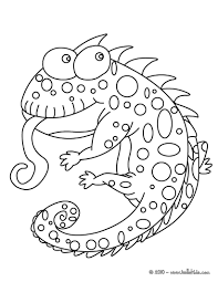 carpet chameleon coloring pages hellokids com