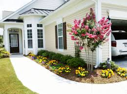 Basic Backyard Landscaping Ideas by Landscape Plant Are You Trying Tothe Inspirations Also Easy Ideas