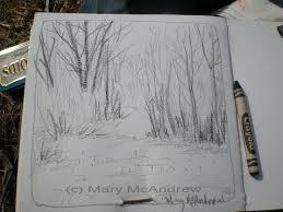 watercolor crayon mary mcandrew