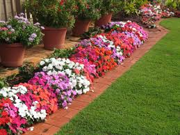 garden design with backyard ideas on pinterest small red rock