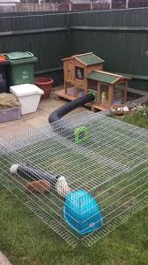 Rabbit Hutch For Multiple Rabbits Its A Rabbits Life U2013 Do It Yourself Rabbit Hutches Silvia U0027s Crafts