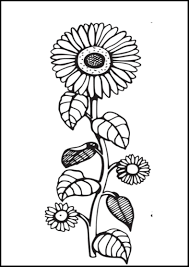 sunflower coloring pages bestofcoloring com
