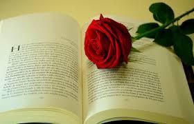 books wallpaper love books wallpapers books pinterest love book wallpaper