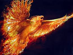 66 best fire art and fire pictures images on pinterest fire art