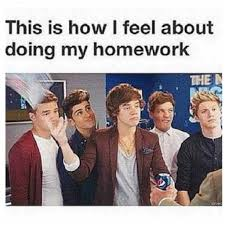 True Life Meme - omg why are one direction memes so funny hahaha its so true