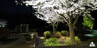Backyard Landscape Lighting Ideas - clean deck and landscaping calgary for backyard landscape lighting