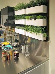indoor kitchen garden ideas amazing diy indoor herbs garden ideas