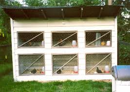 Design Your Own Home To Build Simple Poultry House Plans With Simple Easy To Build Chicken Coop