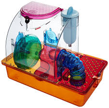 Petsmart Hamster Cages Amazon Com Pen Plax Samdu1 Dingo Home Hamster Cage Small