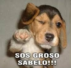 Sos Meme - hispanic meme sos groso