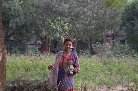 sadullapur rose garden picture of sadullapur flower garden