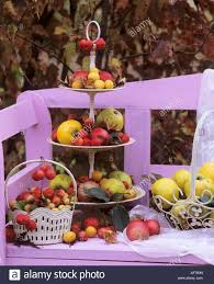 tiered metal stand with apples ornamental apples and quinces