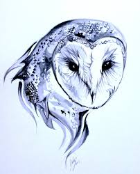 snow owl tattoo sketch real photo pictures images and sketches