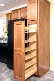 shallow storage cabinet with doors kitchen cabinets racks storage interesting kitchen cabinet door