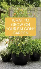 contained planter ideas for balcony gardens from the san g gen