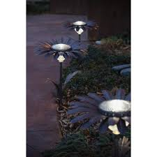 desert steel solar lights daisy solar light evans lane