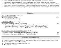 download professional summary for resume haadyaooverbayresort com