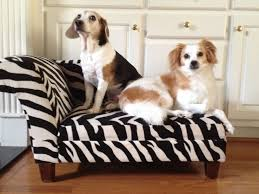 Dog Chaise Pet Friendly Furniture