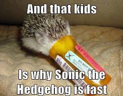 Hedgehog Meme - image 601554 sonic the hedgehog know your meme