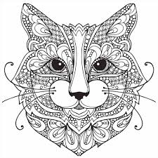 cat coloring pages for kids cats coloring pages pinterest warrior cats and page for daisy