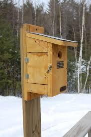best 25 blue bird house ideas on pinterest bird house plans