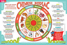 Best Horoscope by The 25 Best 2016 Chinese Zodiac Ideas On Pinterest What U0027s My