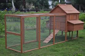 Backyard Chicken Run by Amazon Com Ardinbir Huge 145 U0027 Backyard Chicken Coop Bantam Hen