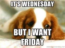 Puppy Face Meme - it s wednesday but i want friday sad puppy meme generator its