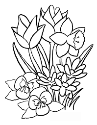 coloring pictures of flowers to print printable flowers to color flowers printable coloring pages