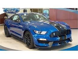 mustang shelby used best 25 used mustangs for sale ideas on ford mustang