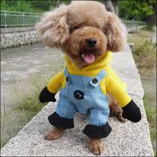 Funny Halloween Animal Costumes Aliexpress Buy Funny Halloween Pet Cat Dog Minions Costume