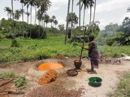 grain palm production in and central africa