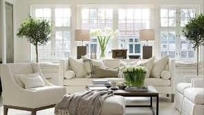 home plants decor living room beautiful minimalist living room cozy style indoor