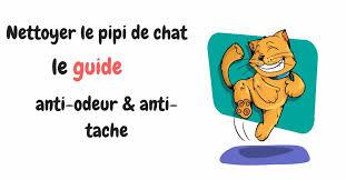 tache de pipi sur canapé comment nettoyer l urine de guide anti traces
