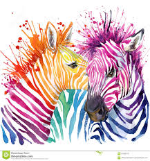 funny zebra t shirt graphics rainbow zebra illustration stock