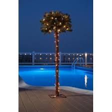 lighted palm tree kmart essential garden 5ft palm tree