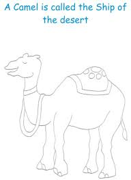 camel printable coloring page for kids