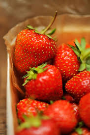 16 fun facts all strawberry lovers should know