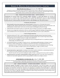 coo resume ceo resume examples sample chief executive officer