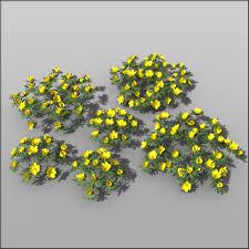 garden flowers vol 2 u2013 silva3d