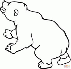 brown bear coloring animal creative brown bears