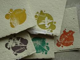 seed cards eco friendly paper porridge papers plantable herb cards paper