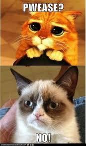 dreamworks puss boots cute kitten disney pixar