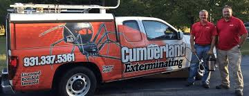 charter crossville tn cumberland exterminating crossville tennessee whitecap crawl space