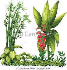 vector clip of ornamental plants illustration of the