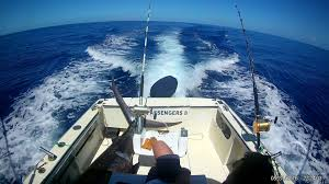 Sport Fishing Flags Mauritius Fishing Charters Fishingbooker