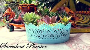 succulent planter make a beautiful succulent planter in 5 minutes youtube