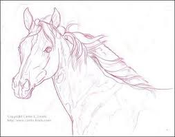 colored pencil fire n ice filly direct drawing carrie l