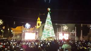 lighting the tree in bethlehem 2015