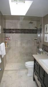 Bathroom Remodle Ideas Bathroom Bathroom Renovations Image Perfect Home Unusual Images